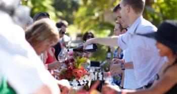 Constantia Fresh Fine Wine & Food Festival