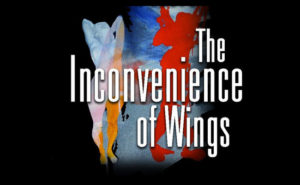 The Inconvenience of Wings