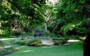 The Best Gardens and Parks in Cape Town